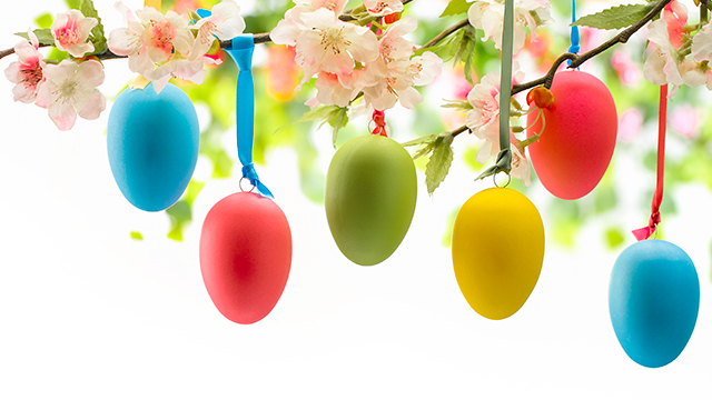 Eier an Blütenzweig (c) dreamstime